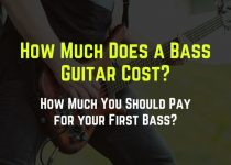 how much does a bass guitar cost