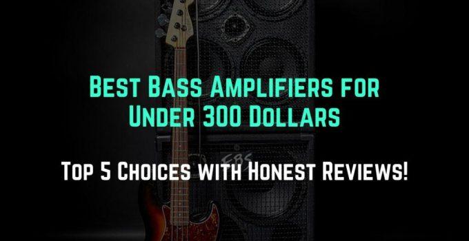best bass amp under 300